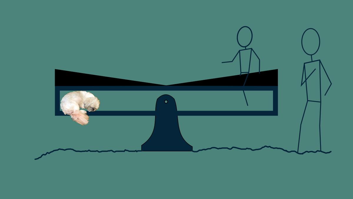 A seesaw with a dog sleeping on one end and one child sitting on itto balance it out. A sloped object on top encourages them to migrate toward the center.